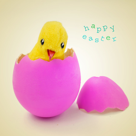 a teddy chick emerged from a hatched pink easter egg and sentence happy easter on a beige background, with a retro effect photo