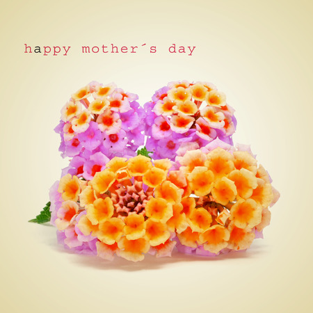 a bunch of verbena flowers and the sentence happy mothers day on a beige , with a retro effect