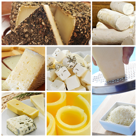 a collage of pictures of different kind of cheese photo