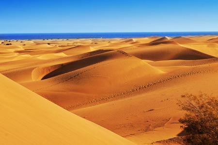 ein Blick auf das Naturschutzgebiet der Dünen von Maspalomas, Gran Canaria, Kanarische Inseln, Spanien Standard-Bild