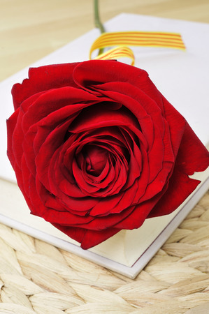 a red rose and a book, for Saint Georges Day in Catalonia, Spain, where is traditional to give a red rose to the women and a book to the men photo