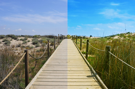 tonality: landscape with a broadwalk before and after the image editing process