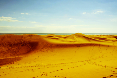 bartolome: a view of the Natural Reserve of Dunes of Maspalomas, in Gran Canaria, Canary Islands, Spain Stock Photo