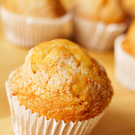 madeleine: closeup of some magdalenas, typical spanish plain muffins
