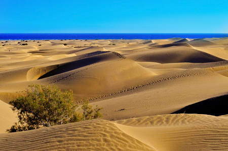 a view of the Natural Reserve of Dunes of Maspalomas, in Gran Canaria, Canary Islands, Spain Stock Photo