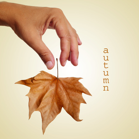 dropping: a man dropping a dried leaf and the text autumn on a beige