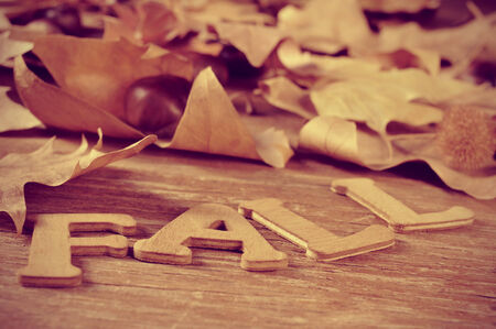 wooden letters forming the word fall and some autumn leaves on a weathered wooden background photo