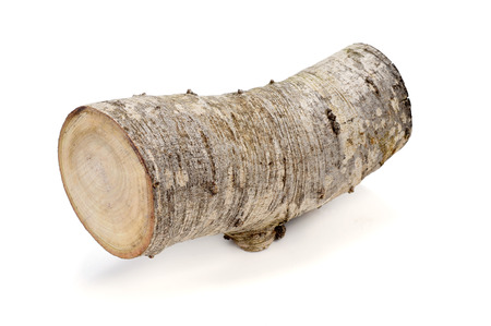 a log on a white background