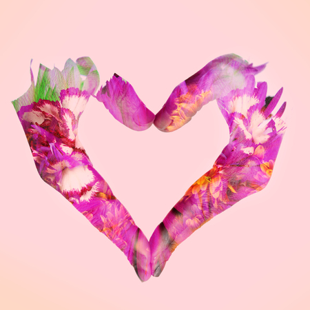 multiple exposure: double exposure of woman hands forming a heart and flowers, on a pink background Stock Photo