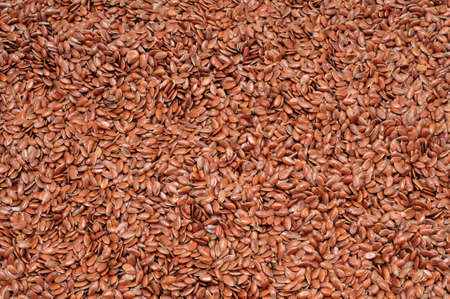 common flax: closeup of healthy brown flax seeds