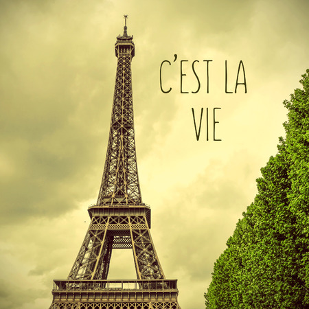 la tour eiffel: the Eiffel Tower with a retro effect and the text cest la vie, that is life in french Stock Photo