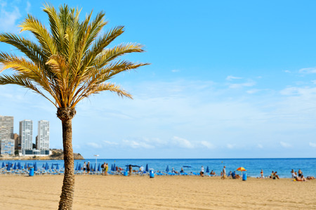 vacationers: a view of Levante Beach