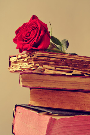 closeup of a red rose on a pile of old books photo