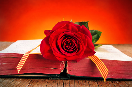 sant: a red rose and the catalan flag on an old book for Sant Jordi, the Saint Georges Day, when it is tradition to give red roses and books in Catalonia, Spain