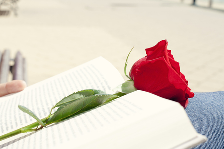 sant: closeup of a young man with a red rose on an open book for Sant Jordi, the Saint Georges Day, when it is tradition to give red roses and books in Catalonia, Spain