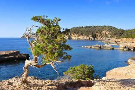 northern spain: a view of the Mediterranean Sea and a calm scene in the northern coast of Ibiza Island, in Balearic Islands, in Spain