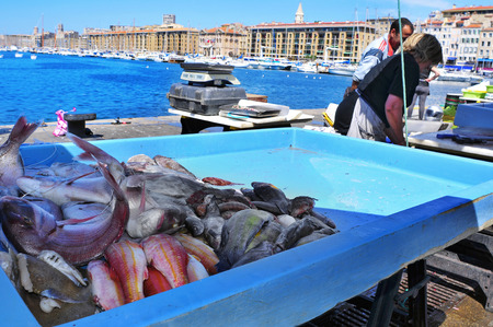 city fish market: Marseille, France - May 17, 2015: Fish market at the Old Port in Marseille, France. It is a busy port, used as a marina and as a terminal for boat trips