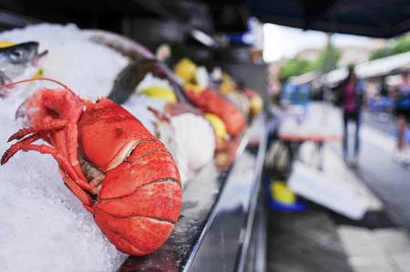 deepsea: closeup of a fresh lobster and other seafood on sale in an open-air fish market