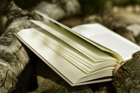 cramming: closeup of an open book outdoors in a rustic scenery with some tree trunks in the background