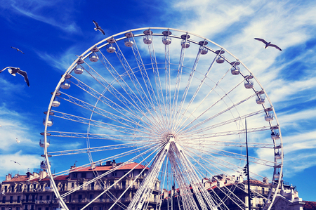 old port: seagulls and a Ferris wheel at the Old Port of Marseille, France, with a filter effect
