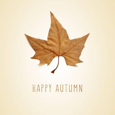 feuille arbre: une feuille sèche de platane et le texte automne heureux sur un fond beige