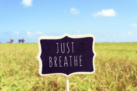 take a breather: a black signboard with the text just breathe written in it in a peaceful landscape