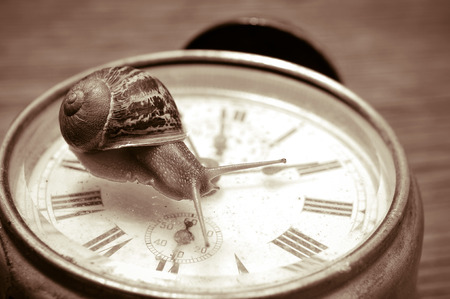 slowly: a land snail on an old desktop clock, in sepia tone