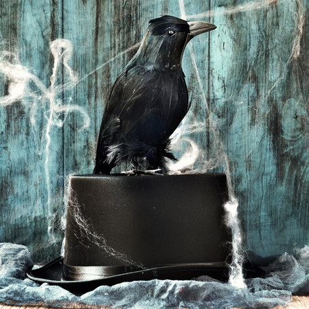 dismal: a black crow on an elegant top hat in a dismal scene full of cobwebs