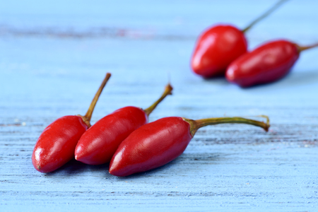 red chilli: closeup of some small red chili peppers on a blue rustic wooden surface