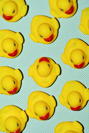 diverging: a pile of rubber ducks, one of them countercurrent, on a dot-patterned background, with a hard-shadow processing