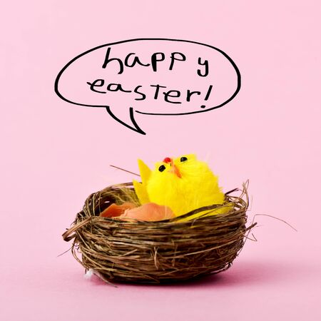 hitched: a teddy chick in a nest emerged from a hitched egg and the text happy easter handwritten in a speech bubble, against a pink background
