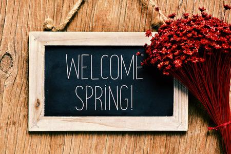 primer plano de una pizarra enmarcada con el texto escrito en la primavera de bienvenida y un montón de pequeñas flores de color rojo contra una superficie de madera rústica