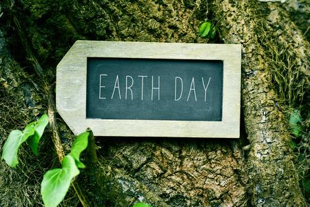 respeto: Primer plano de una pizarra en forma de etiqueta con el texto de la tierra d�a en el tronco de un �rbol Foto de archivo
