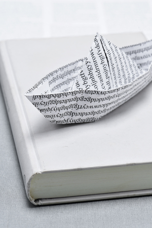 nonsense: closeup of a paper boat, made with a printed paper with non-sense words, on a book Stock Photo