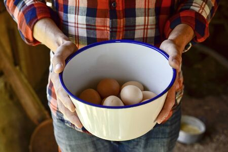 henhouse: closeup of a young caucasian farmer man wearing a plaid shirt with a white vessel in his hands with some fresh chicken eggs Stock Photo