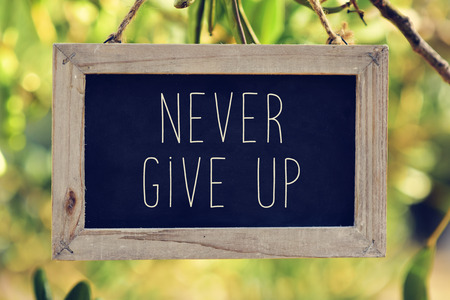 surrender: closeup of a wooden-framed chalkboard with the text never give up hanging on the branch of a tree