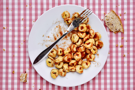 surfeit: high-angle shot of a plate with remains of tortellini with bolognese sauce and remains of bread, on a table set with a checkered tablecloth