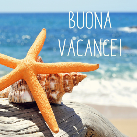 vacance: closeup of a yellow starfish and a conch on a weathered tree trunk on the beach, and the text buona vacance, happy vacation in italian