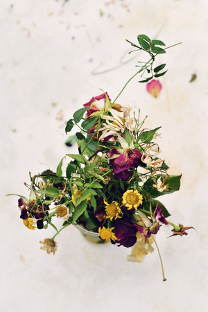 tainted: closeup of a bouquet of wilted flowers in a vase on an off-white background