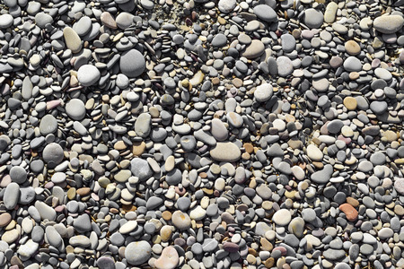 shingle: closeup of a background of pebbles of a shingle beach or of the bank of a river