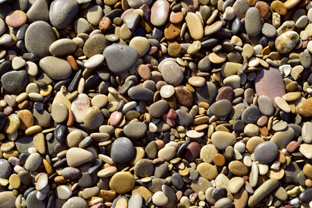 shingle beach: closeup of a background of pebbles of a shingle beach or of the bank of a river
