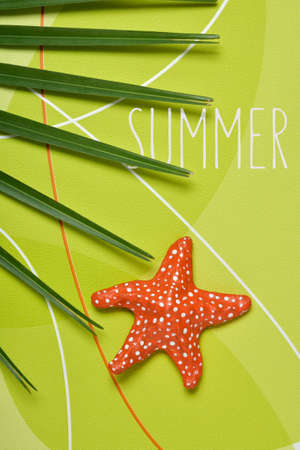 papiermache: high-angle shot of a palm tree leaf, a colorful papier-mache starfish and the text summer on a green patterned background