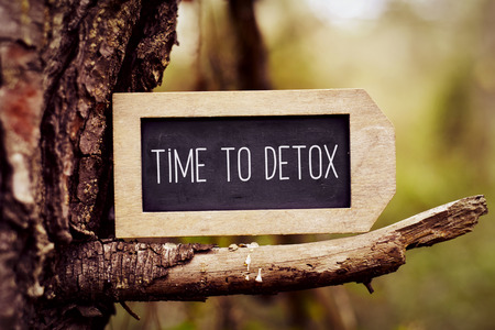 closeup of a label-shaped chalkboard with the text time to detox written in it, placed on the branch of a pine tree