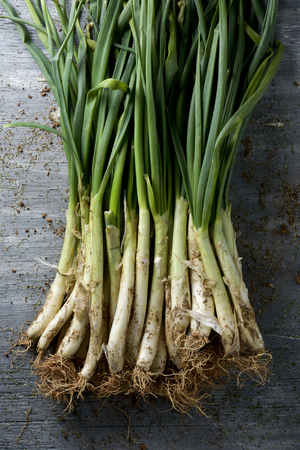 calsotada: high-angle shot of a bunch of raw calcots, sweet onions typical of Catalonia, Spain, on a rustic wooden table Stock Photo
