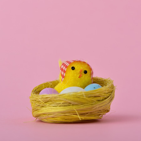 a teddy chick in a nest next to some eggs of different colors, against a pink background, with a blank space above it Stock Photo