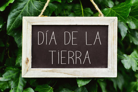 closeup of a wooden-framed chalkboard with the text dia de la tierra, earth day written in spanish, in a tree Stock Photo