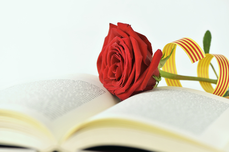 closeup of a red rose and a catalan flag in an open book for Sant Jordi, the Catalan name for Saint Georges Day, when it is tradition to give red roses and books in Catalonia, Spain