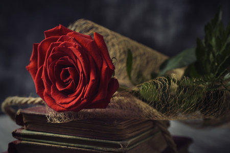catalunya: a red rose on a pile of old books, on a rustic surface, for Sant Jordi, the Catalan name for Saint Georges Day, when it is tradition to give red roses and books in Catalonia, Spain