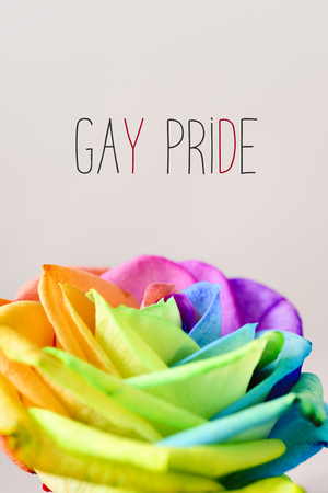 closeup of a rose with its petals with the colors of the rainbow flag and the text gay pride on an off-white background