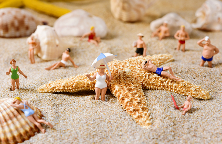 sunbath: some different miniature people wearing swimsuit relaxing next to some seashells and a starfish on the sand of the beach